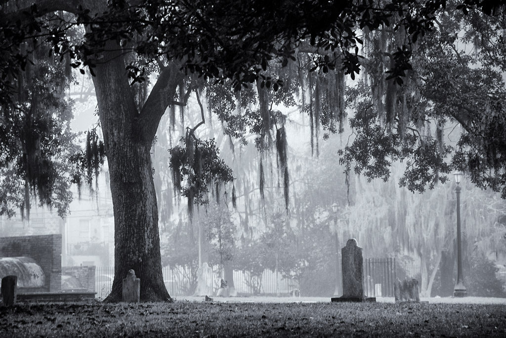 Fog Over Colonial Park